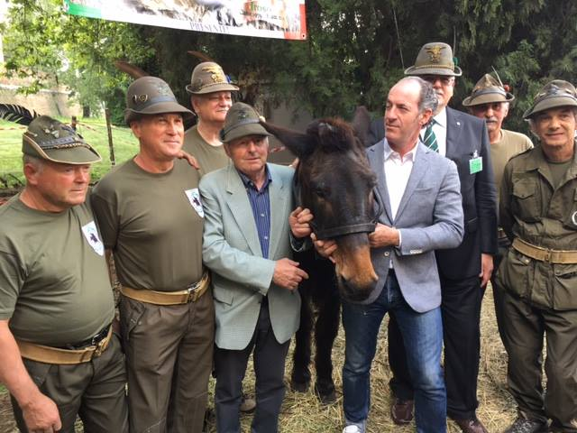 Malore dopo adunata a Treviso: morto alpino di Valtorta