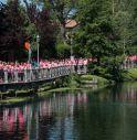 Treviso in Rosa