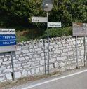 Lavori in via San Floriano, i cittadini chiedono di togliere i cipressi: