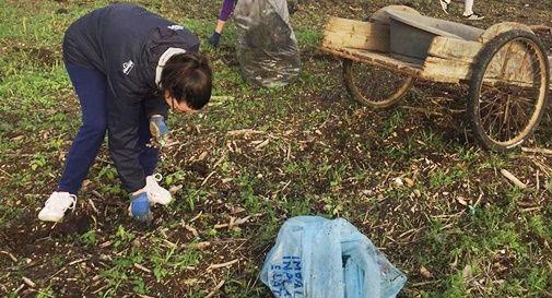 Vanno a piantare alberi, ma trovano una discarica di plastica
