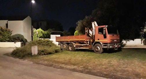 Parco verde usato come parcheggio, posteggiano pure i camion in mezzo all'erba e agli alberi