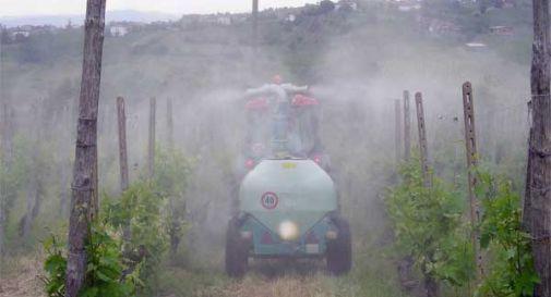 A Miane e Cison pesticidi nei centri abitati e in strade pubbliche