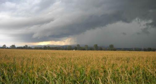 Piogge raddoppiate: agricoltura in pericolo