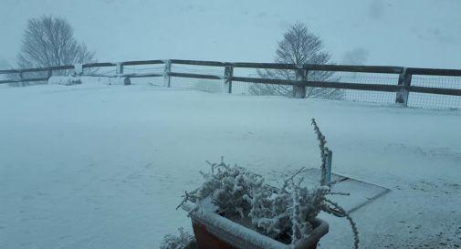 Neve a bassa quota: Miane imbiancata