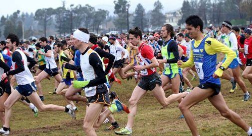 Atletica, Treviso al Trofeo delle Province