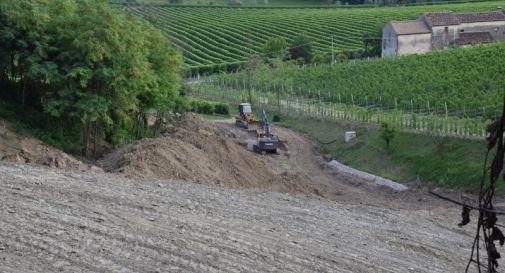 Sbancamenti e pesticidi,