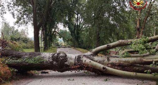 Arriva una nuova perturbazione tra giovedì e venerdì, è ancora allerta meteo in Veneto