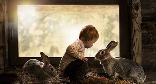 un bambino e due conigli, in pace e sereni