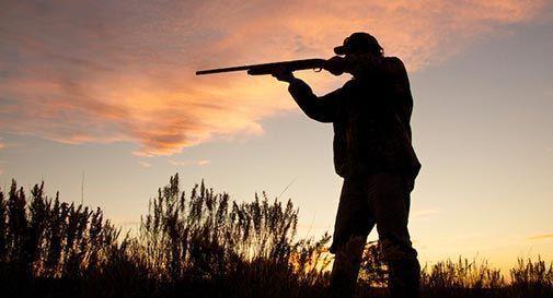 Inciampa e gli parte un colpo di fucile, morto un cacciatore