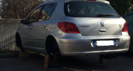 Rubano le gomme all'auto parcheggiata in via Gorgazzo