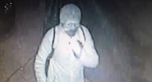 la foto del ladro in via San Nicolò (pubblicata su facebook)