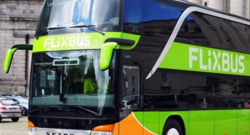 FlixBus arriva a Treviso, bus diretti per Trieste, Bologna, Roma
