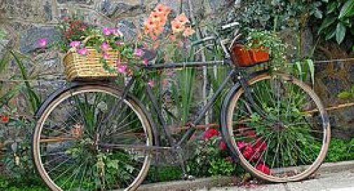 80enne si finge invalida, e va a fare la spesa in bici