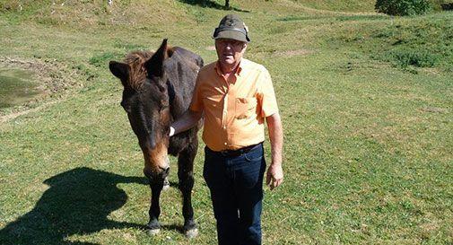 Iroso, l'ultimo mulo alpino. Miracolato