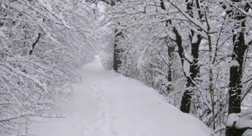 Arriva la neve a bassa quota, stato di attenzione in Veneto