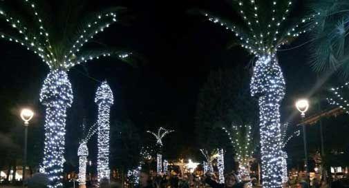 civitanova palme luci ambigue