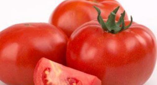 Creato il super-pomodoro contro diabete, Alzheimer e cancro