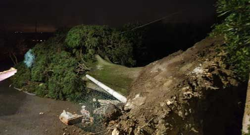 Vento fortissimo: alberi caduti e blackout a Conegliano, Vittorio Veneto e Quartier del Piave