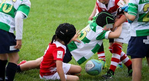 trofeo mini rugby