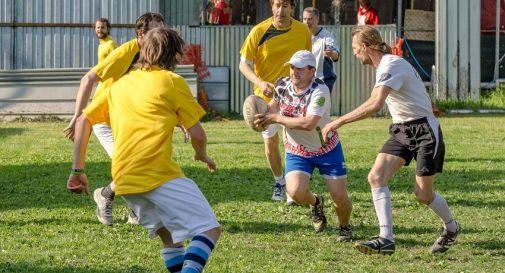 torneo Zebre Gialle