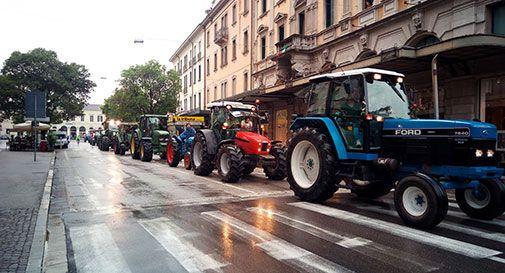 80 trattori capitanati da Zaia invadono Conegliano